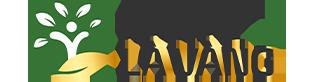 logo-khoedeplavang