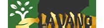 logo-khoedeplavang.com