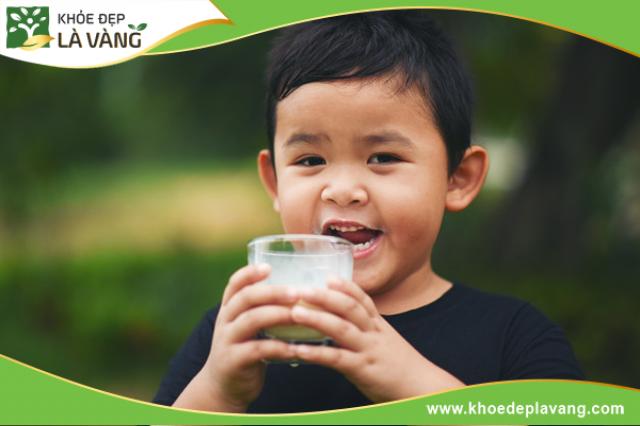 Sữa tăng chiều cao pha sẵn nên chọn mua loại nào? [ Review chi tiết 10 loại]